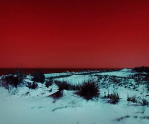 red, aesthetic, and nature image