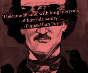 edgar allan poe, quotes, and insane image