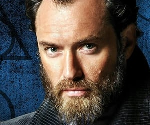 dumbledore, fantastic beasts, and jude law image