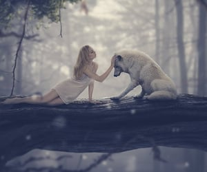 animals, dark, and nature image