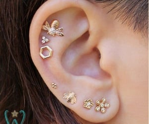 bee and piercing image