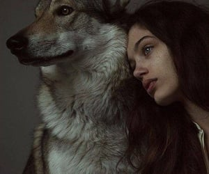 girl, animal, and wolf image