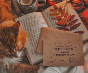 aesthetic, carefree, and autumn image