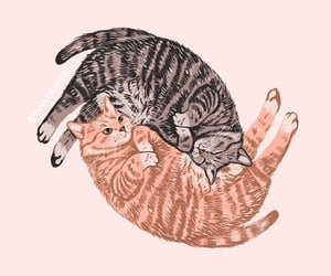 cat, illustration, and cute image