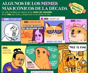 grumpy cat, doge, and memes image