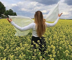 flower field, flowers, and wings image