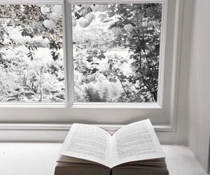 winter, book, and snow image