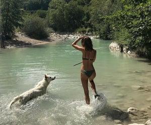 dog, girl, and summer image
