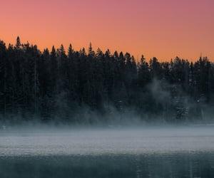 lake, trees, and watsf image