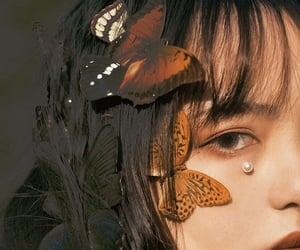 butterfly, girl, and aesthetic image