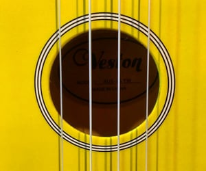 instruments, music, and yellow image