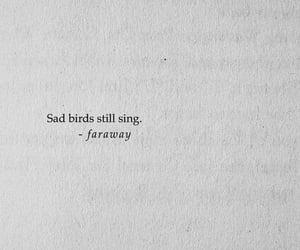 quotes, sad, and bird image