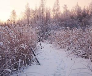 finland, landscape, and pretty image
