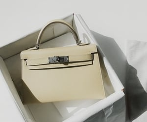 bag and hermes image