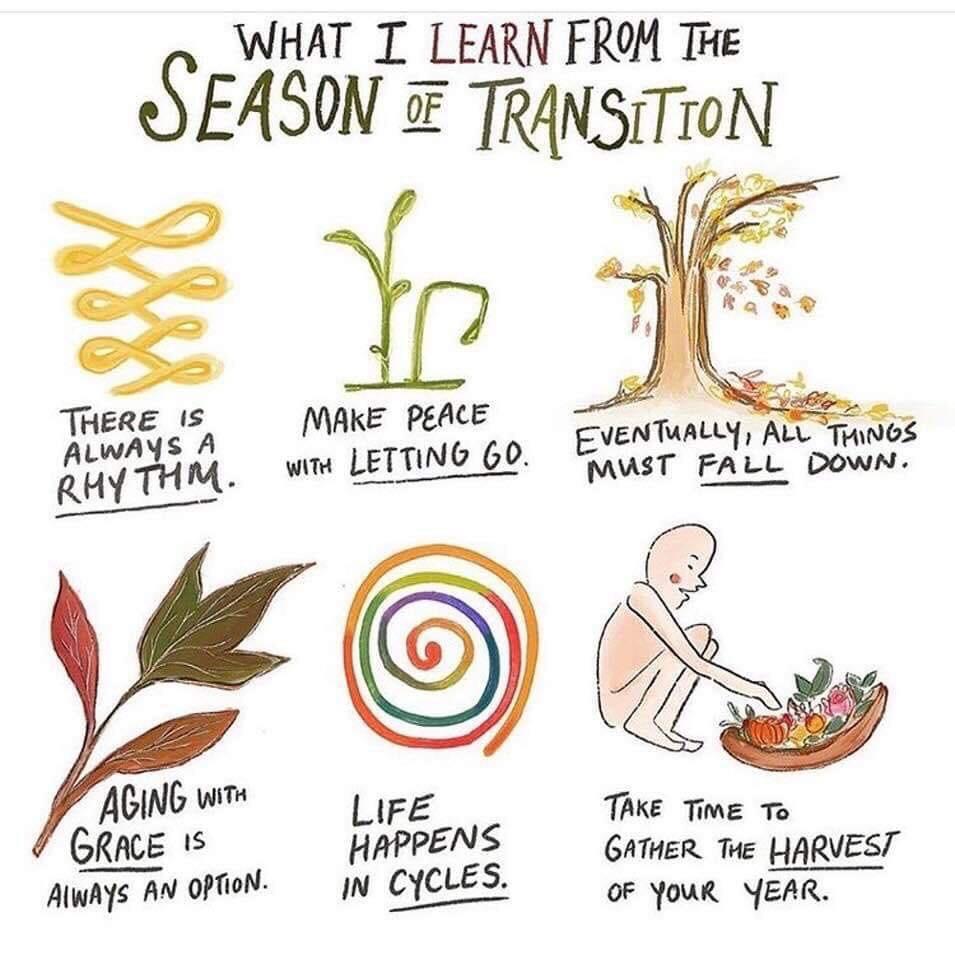 autumn, peace, and seasons image