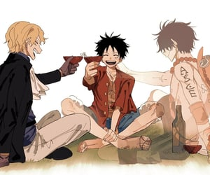 anime, brothers, and one piece image