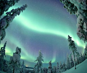 dreamy, northern lights, and sky image