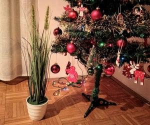 christmas, green, and decorations image