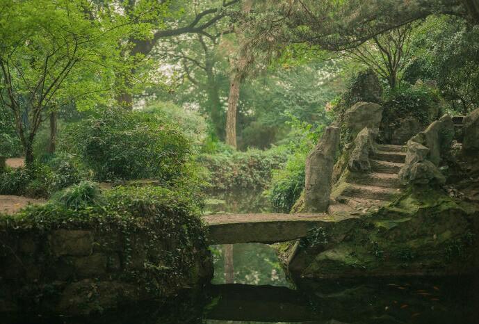 bridge, garden, and pond image