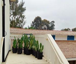 california, Carlsbad, and ranch image