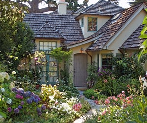 flowers, garden, and cottage image
