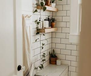 home, minimalist, and plants image