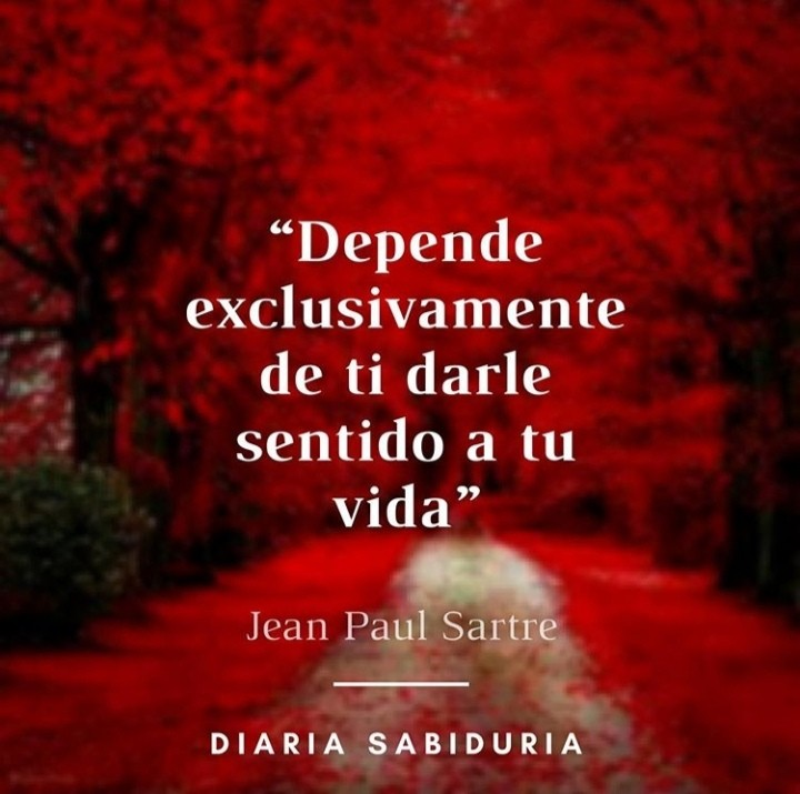 frases, reflexiones, and textos image