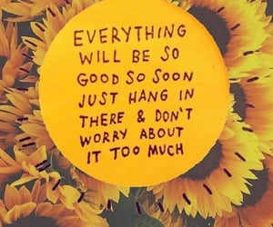 quote, sunflower, and yellow image