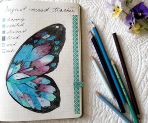 art, butterfly, and colorful image