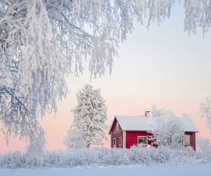 finland, nature, and instagram image