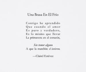 amigos, espanol, and flores image