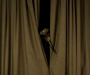 creepy, curtains, and dark image