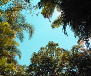 blue, park, and cloud image