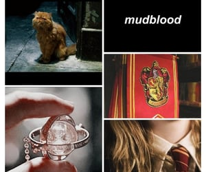 gryffindor, time turner, and aesthetic image