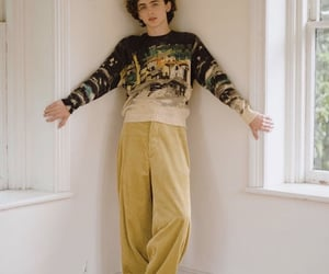 timothee chalamet, actor, and boy image