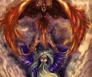harry potter and fawkes image