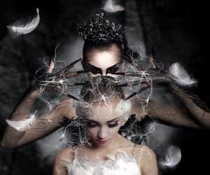 dark, evil, and swans image