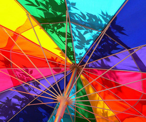 rainbow, colorful, and summer image