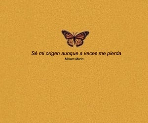 butterfly, orange, and poesia image