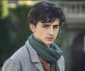 timothee chalamet and little women image
