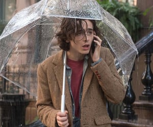 Hot, movies, and timothee chalamet image