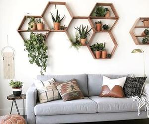 home decor, living room, and plants image