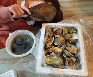 oysters, seafood, and txt image