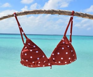 bea, bikini, and bra image