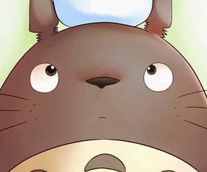 totoro, anime, and kawaii image