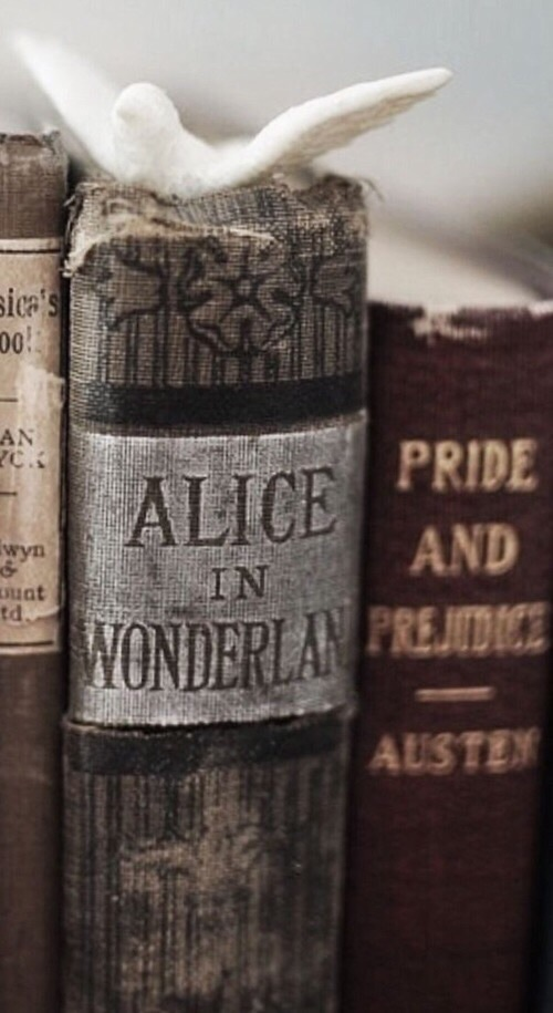 aesthetic, madness, and alice in wonderland image