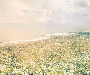 dreamy, flowers, and sea image