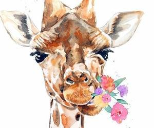 flower, lovely, and giraffe image