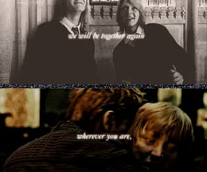 book, Fred, and george image