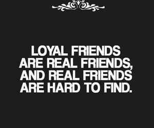 loyal, cited, and friends image